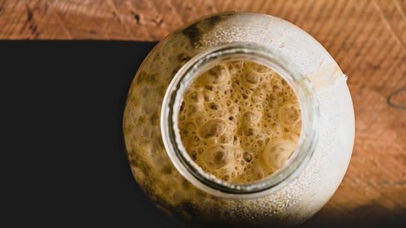 nutrientes de la cerveza