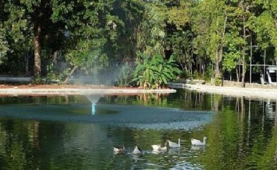 historia del parque papagayo